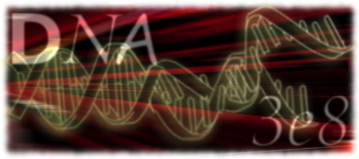 DNA3e8